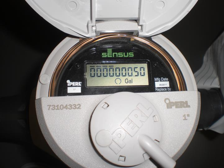 Digital Water Meter Reading : Meter reading pace water system inc